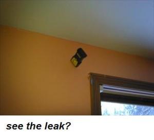 see the leak 1