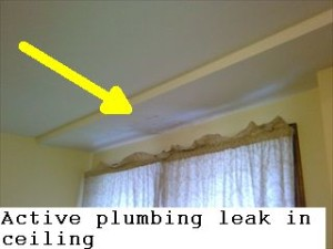 plumbing leak ceil 1